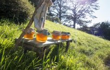βάζα με μέλι στον ήλιο στη φύση βιολογικά τρόφιμα - viologika proionta 12269 NaturesHouseGR  220x140 - βιολογικά προϊόντα – βιολογικά τρόφιμα