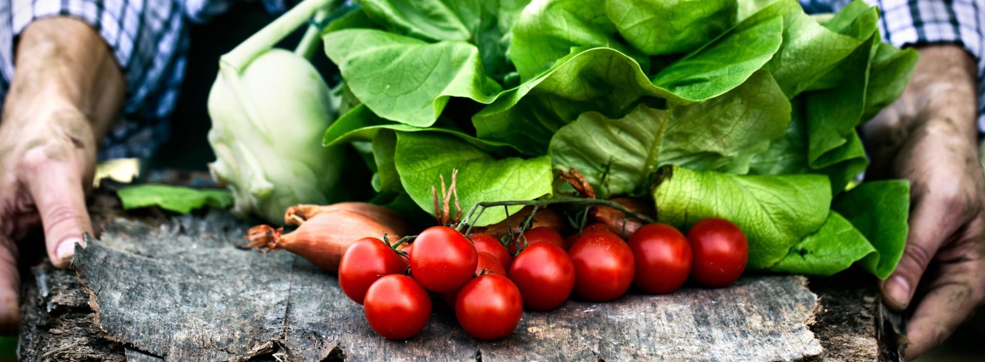 φυτική διατροφή - laxanika natureshouse - φυτική διατροφή: γιατί αξίζει;