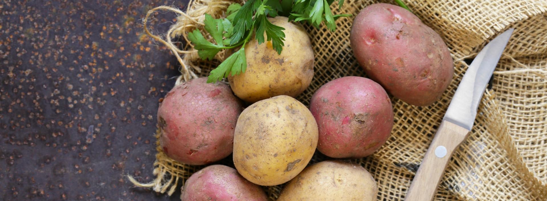 - organic potatoes natureshousegr - Γιατί βιολογικές πατάτες και όχι συμβατικές;